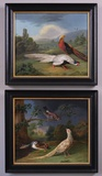 Pheasant, Duck & Jay in a wooded river landscape & Golden and Silver Pheasant in a landscape